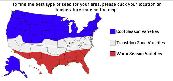 usa_transitions-600x281.jpg